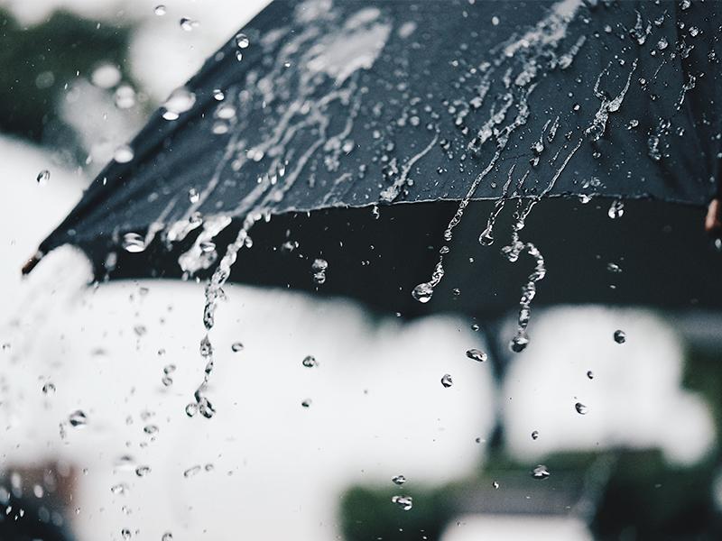 Mengenal <i>Petrichor</i>, Istilah untuk Aroma Khas Saat Hujan
